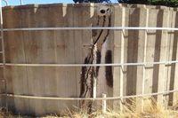 water tank repairs